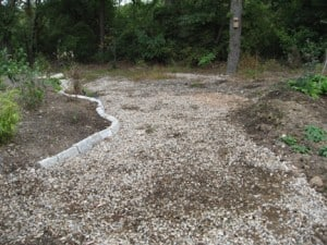My gravel path where I want self-seeders to grow.