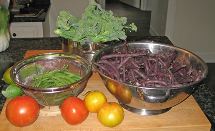 I am thankful that our first-year garden produced so well this season.