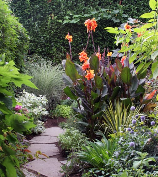 Some large leaves, some small. Foliage that is spiky, round, long or short. Purple, yellow, silver, bluish, light green and dark. Does it take variety to make a garden come alive?