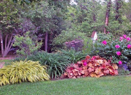 Garden Design With Perennial Pleasures Â« Whole Life Gardening With How To  Plant Persimmon Tree