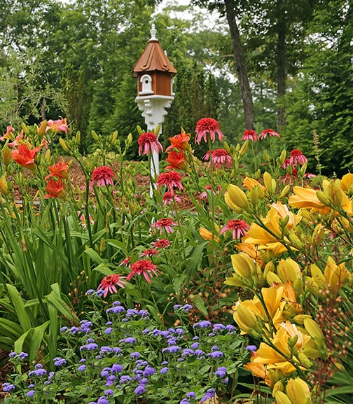 Birdhouses and Gardens
