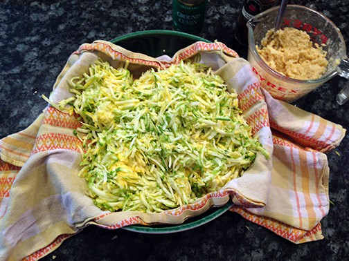 What To Do With Too Many Zucchini – #2